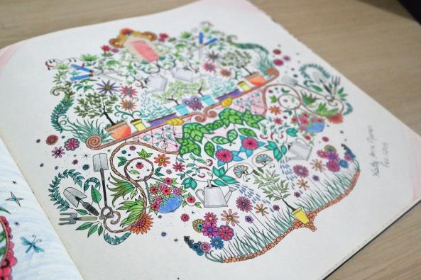 Datoonzcom Imagens Jardim Encantado Livro Vrias